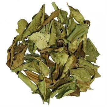 Листья каффир-лайма сушеные, 25г - фото 17313