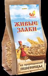 Каша Живые злаки из пророщенной пшеницы, 300г, Дивинка