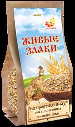 Каша Живые злаки из пророщенных овса, пшеницы, ячменя, ржи, 300г, Дивинка